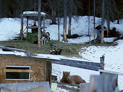 Edge of Alaska Season 3