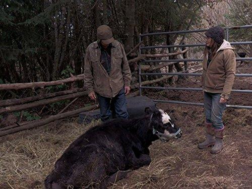 Alaska: The Last Frontier Season 7 date release